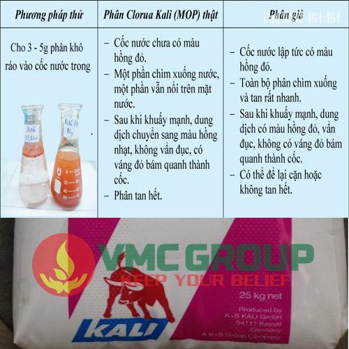 phan biet Kali Clorua – KCL Potassium Chloride (MOP)